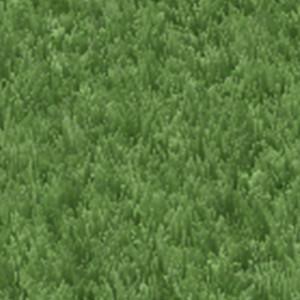 lawnsigngrass